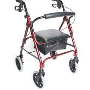 Lightweight Aluminium Safety Walker (Standard)